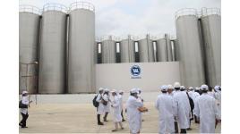 Công ty Cổ phần Sữa Việt Nam
