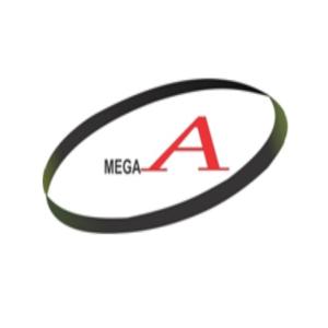 Công ty Cổ phần Đầu tư thương mại Mega A