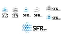 Công ty TNHH MTV SFR Software