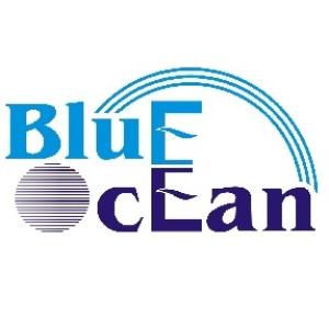 Công ty TNHH Thương mại đầu tư và Phát triển Đại Dương Xanh (Blue Ocean Group)