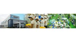 Công ty TNHH Takahata Precision Việt Nam