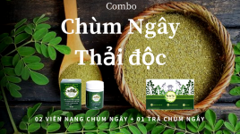 Công ty TNHH Chùm Ngây Việt