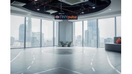 Công ty TNHH TinyPulse