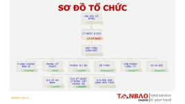 Công Ty Cổ Phần Tân Bảo Sài Gòn