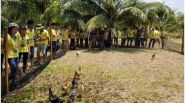 Công ty Cổ Phần Đầu Tư Bất Động Sản Rio Land