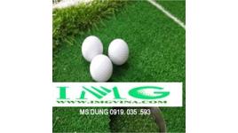 Công Ty Cổ Phần Tư Vấn Xây Dựng Và Thương Mại Golf IMG Việt Nam