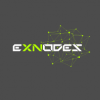 The Exnodes