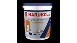 Công Ty CP Sơn Nước Haruko