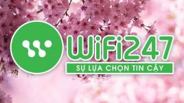 Wifi247 - Wifi Du Lịch