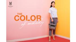 Công ty Cổ phần Thời trang An Phúc
