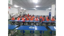Công ty TNHH Hệ thống dây dẫn Sumi Việt Nam