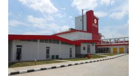 Công ty TNHH XNK Phát Triển Đông Dương