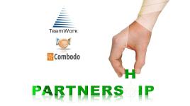 Công ty TNHH TeamWork Việt Nam