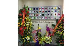 Công Ty TNHH Tribal Media House Technology Lab