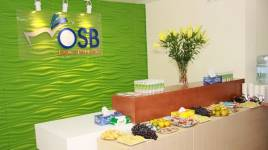 Công ty Cổ phần Đầu tư và Công nghệ OSB