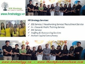 HR Strategy Limited Company