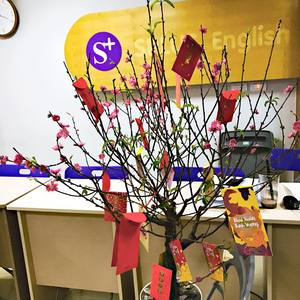 Công ty Cổ phần Splus Education Việt Nam