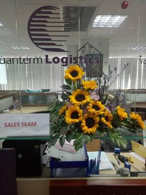 Công ty TNHH Quanterm Logistics Việt Nam