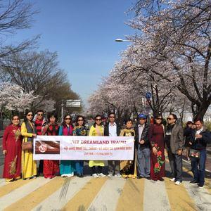 Công ty TNHH Tư vấn và Dịch vụ Du lịch Việt Dreamland