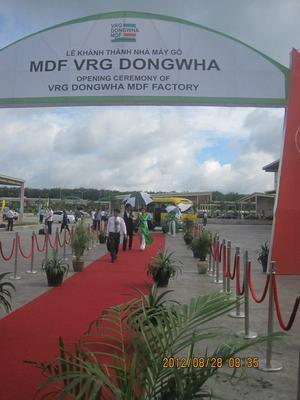Công ty Cổ phần Gỗ MDF VRG Dongwha
