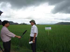 Công ty CP ĐTTM và Phát triển nông nghiệp ADI