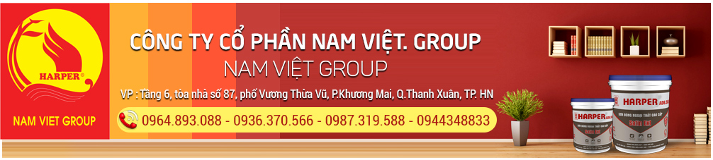 Nam Việt. Group