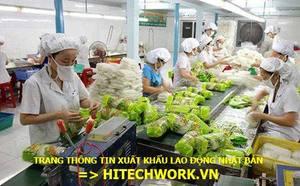 Công Ty TNHH HRHQ