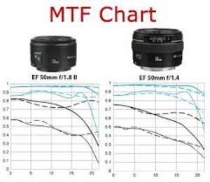 Công ty cổ phần MTF Việt Nam