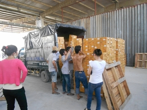 Công ty TNHH Thương mại Kiến Vàng