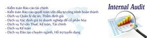 Công ty TNHH Kiểm toán và Thẩm định giá Việt Nam (AVA)