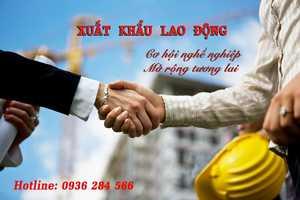 Công ty cổ phần LMK Việt Nam