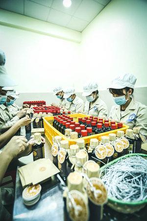 Công ty TNHH Quảng Thái