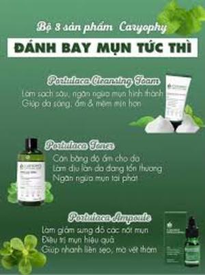 Công Ty TNHH Caryophy Việt Nam