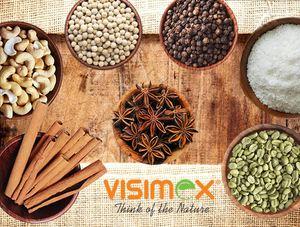Công ty Cổ phần Visimex