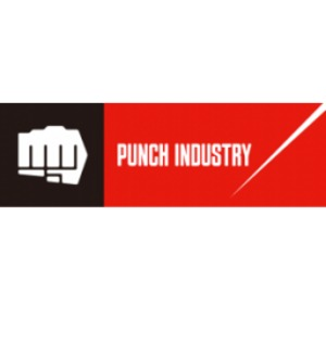 Công Ty TNHH Punch Industry Manufacturing Việt Nam
