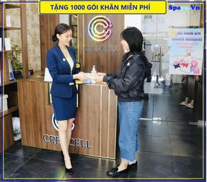 Công Ty TNHH C Company