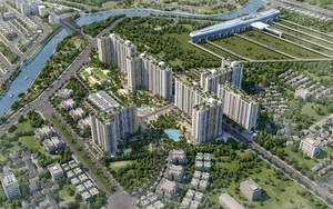 Công ty TNHH Đầu tư Thương mại Dịch vụ Vietland Holdings