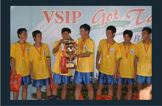 VSIP Group