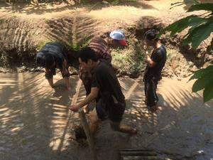 Công ty TNHH Đầu tư và Dịch vụ Bất Động Sản Đất Phương Nam